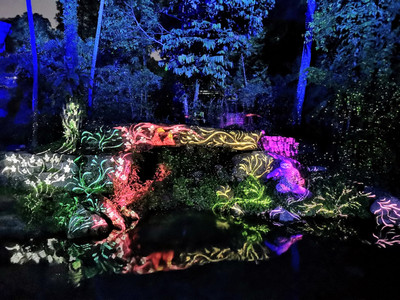 Rainforest Lumina at SIngapore Zoo Night Lights