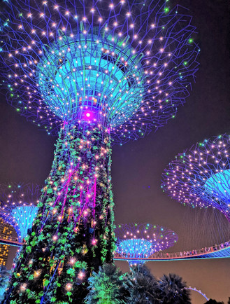Garden Rhapsody Light Show at Gardens by the Bay Singapore