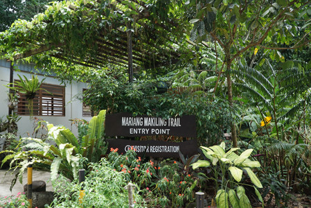 Mount Makiling Trail Entry Point