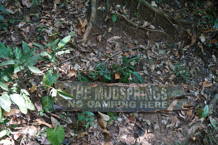 Mudsprings sign of Mount Makiling no camping here
