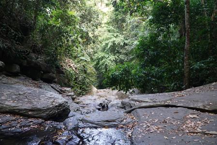 Flat Rocks View at Mount Makiling
