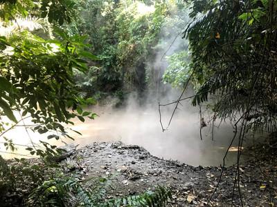 Geothermal Mudsprings releasing steam at Mount Makiling