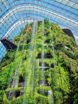 Cloud Forest at Gardens by the Bay Singapore