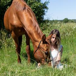 photographe vannes équitation