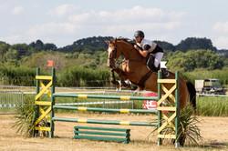 photographe équitation vannes