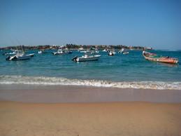 A common scene off the coasts of Senegal