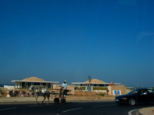 First time driving along La Corniche and seeing a donkey and cars mingle in this round-about
