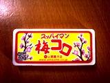 2009年9月8日 (火)umekoro.jpg