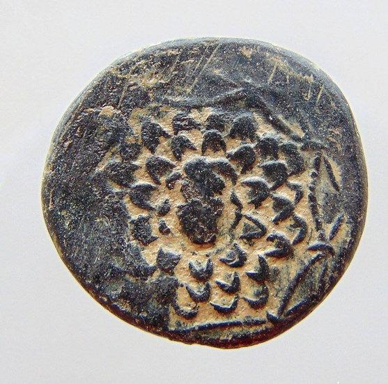 Moeda grega de Pontos - Komana. Cunhada sob Mithradates VI (Cerca 105 aC)
