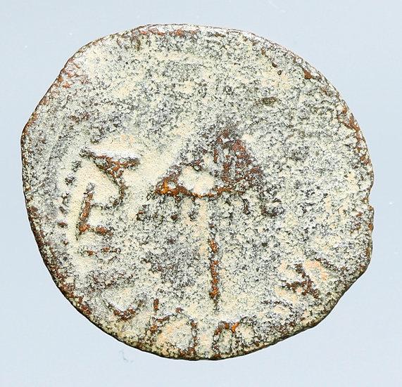 """Moeda judia """"Bíblica"""" de Agrippa I (37-43 CE). Dinastia Herodiana."""