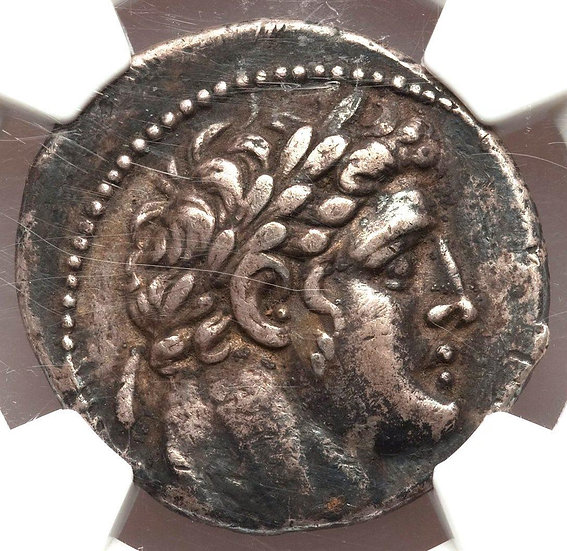 Moeda Bíblica Shekel de Tiro Certificada NGC! (moeda da traição de Judas) Cerca