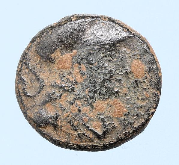 Moeda Grega de Seleukos II (246-225 BC)