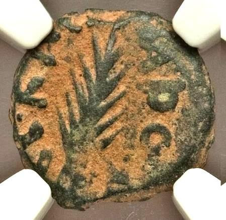 Moeda Judia Bíblica Judaea Porcius Festus (AD 59-62). AE prutah. NGC Money of th