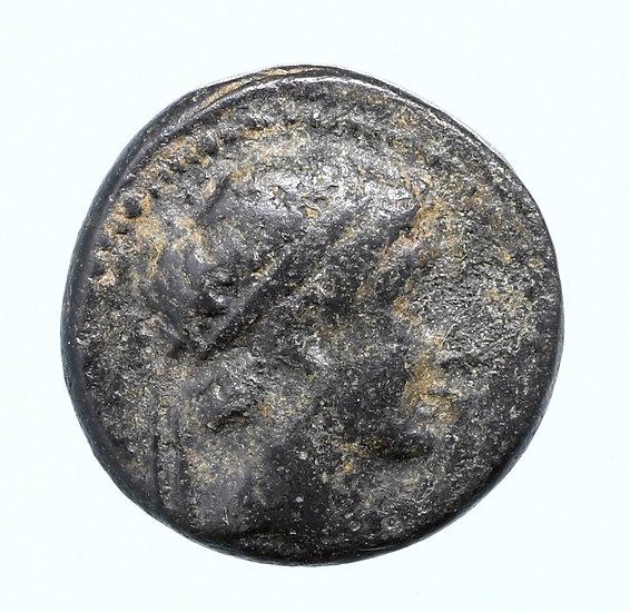 Moeda Grega Escassa de Seleukos II Kallinikos (246-226 aC).