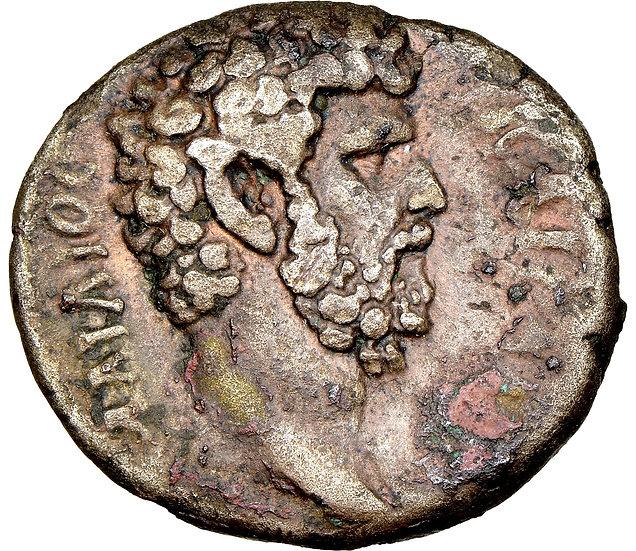Moeda Romana Provincial de Aelius, Egito, Alexandria CERTIFICADA NGC e Pedigree!