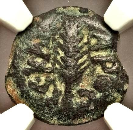 Moeda Judia Bíblica Judaea Porcius Festus (AD 59-62). AE prutah. NGC Money of th