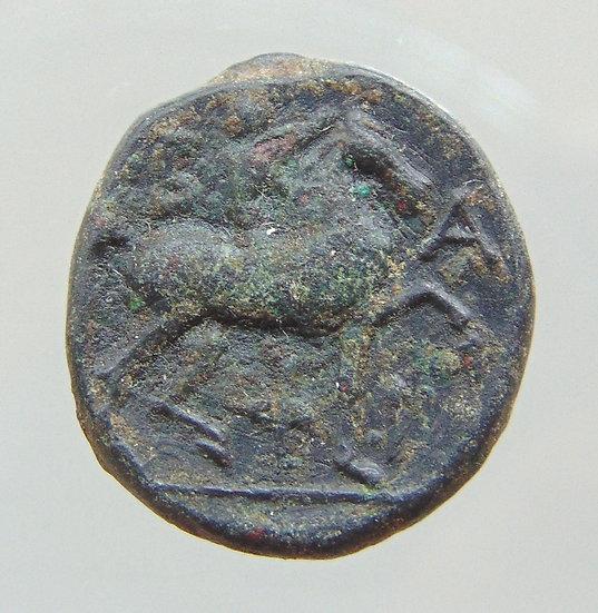 Rara Moeda Grega De Felipe V Æ16 221-179ac