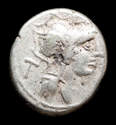 Moeda Romana Republicana Escassa da Gens Junia (91 aC) Decimus Junius Silanus De