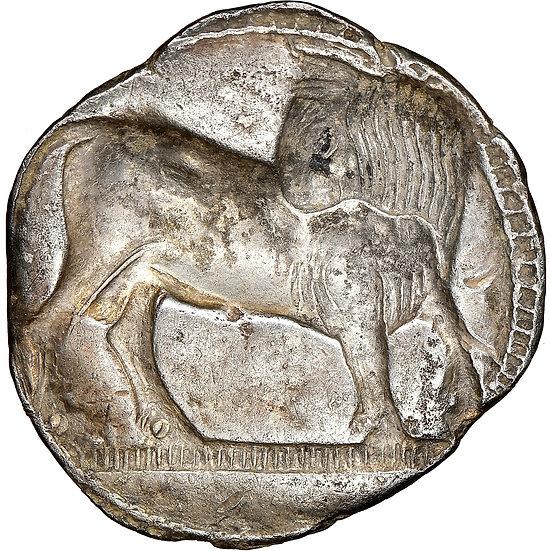 Moeda Grega Rara Stater da Lucania. Sybaris (Ca. 550-510aC).