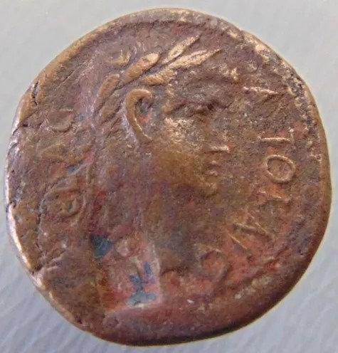 Moeda Romana Provincial Rara de TItus e Domiciano - Mísia Germe.