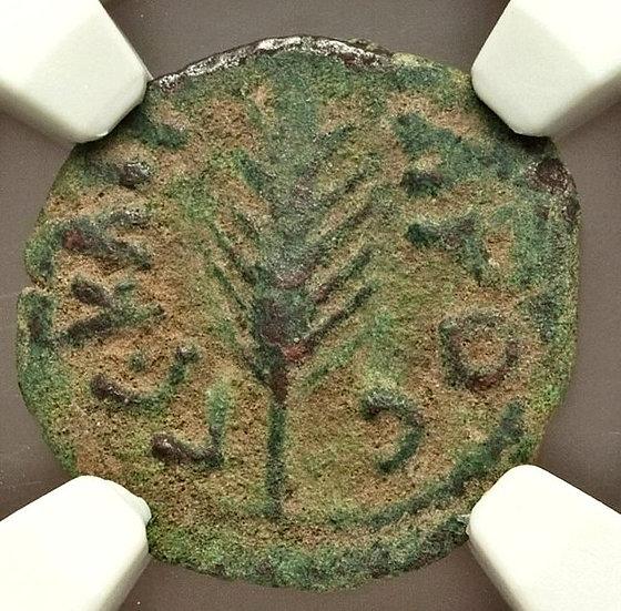 Moeda Bíblica Prutá de Porcius Festus sob Nero (59-63 dC) Certificada N