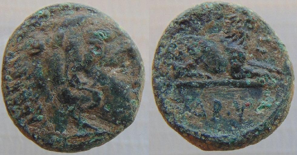 Moeda de Bronze de Kassander (Cassandro) - Macedônia - 319aC