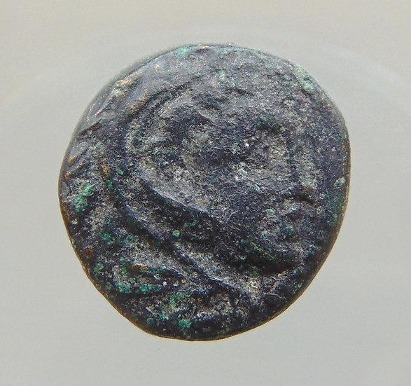 Moeda Grega De Kassander Com Hércules E Leão 319-305ac