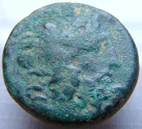 Moeda Grega AE 23 Seleukis e Pieria - Antiochia ad Orontem - ZEUS - 39aC