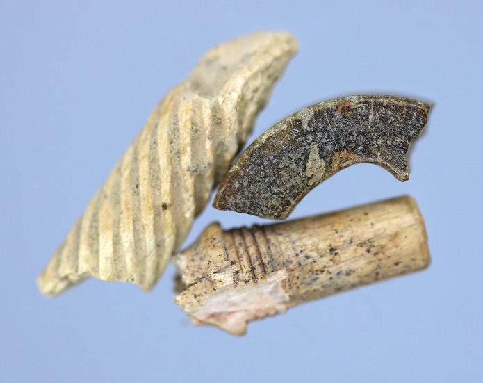Fragmentos de ossos - adereços romanos - ca. Sec 3/4 dC.