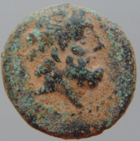 Moeda Fenícia Arados - ZEUS - 137-51 aC