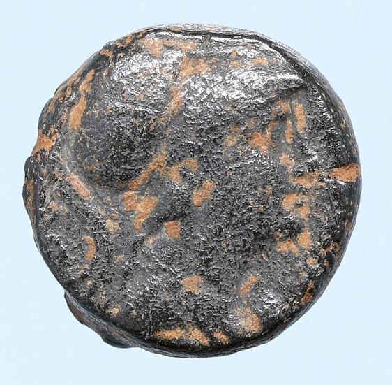 Moeda Grega de Seleukos II (246-225 BC).