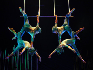 BIG NEWS- I'm Starting Circus School!