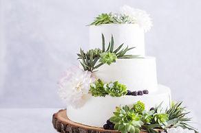 dionysos_wedding_party_with_stars_1.jpg