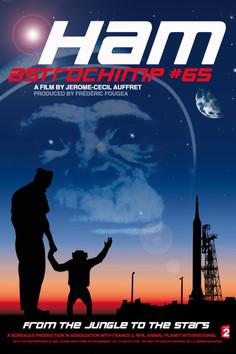 HAM Astrochimp #65