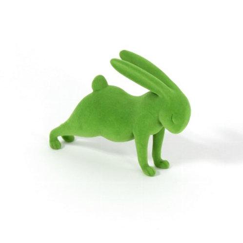 Yoga-Hase Plank, grün