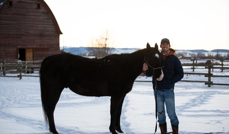 man ground work with black horse