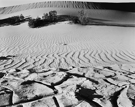 Death Valley National Park, CA, 2015