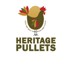 heritage pullet chicken farm logo