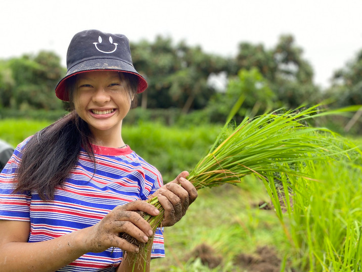 Hello beautiful one with our beautiful rice seedlings