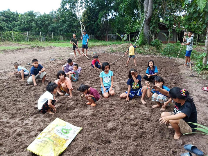 Planting Groundnuts