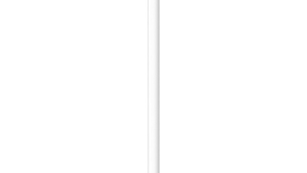 Slightly Used Apple Pencil MK0C2AM/A 1st Generation White for iPad Pro / iPad