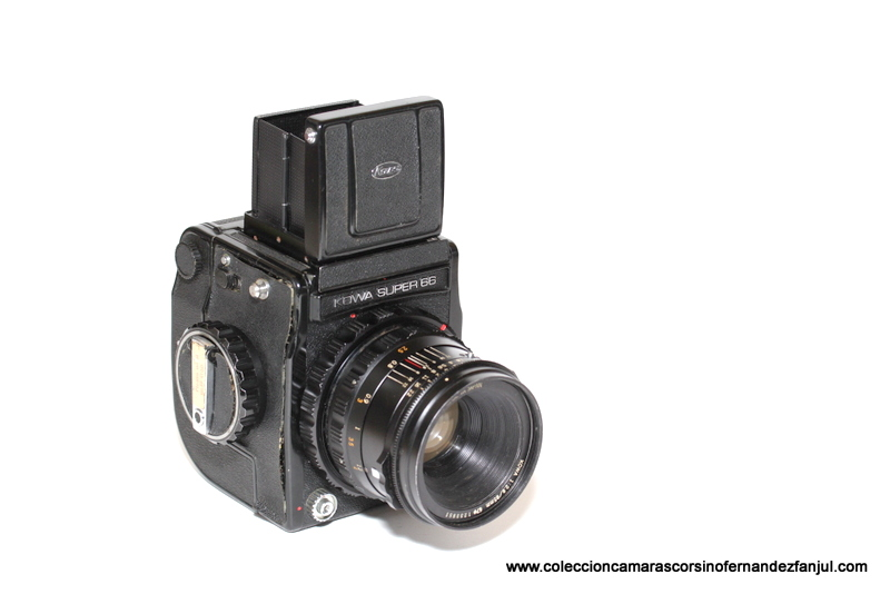 SLR-304.JPG