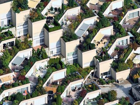¿Por qué el mundo necesita diseñadores para la sostenibilidad?