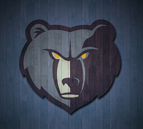 Memphis Grizzlies Jason Levien lp owner Greenwich Advisory Investment Baking, Merchant Banking, other advisory services, capital raise, debt advisory
