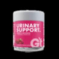 GT_supp_TargetedHealth-UTIsupport-60ct.p