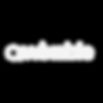 Wixable-Main-Logo-White-Transparent-Back