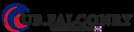 Logo-Calvin's-Desing-Choice-GBColoures.p