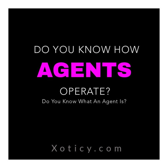 Do You Know How Agents Operate?