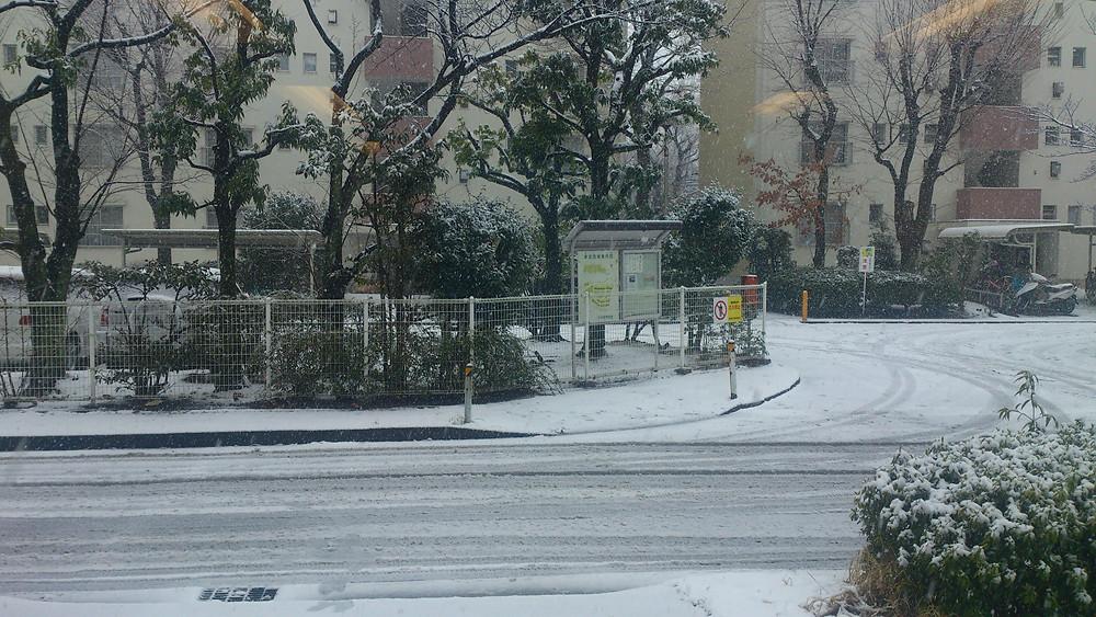 すくすく整骨院前の車返団地の雪の風景