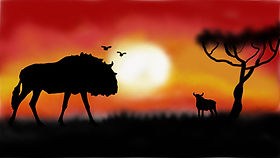Savanna Picture (1).jpg